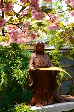 紫式部像前に咲く普賢象(フゲンゾウ)