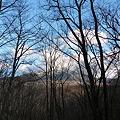庭から見える風景 P1000256