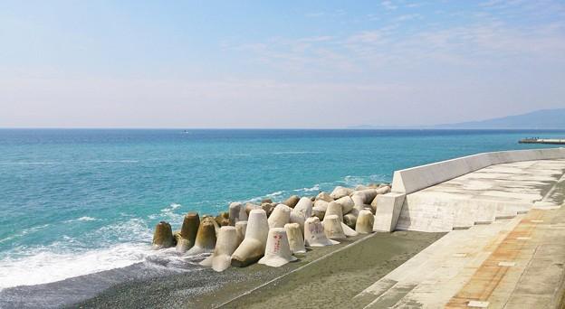 西湘バイパス海2