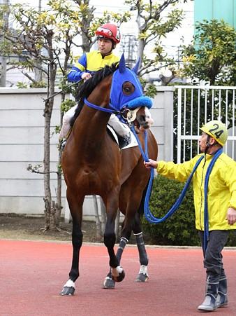120301未来賞-中村尚平騎手-ドリームサンセール-01