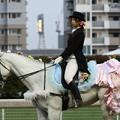 写真: 川崎競馬の誘導馬05月開催 誕生日記念レースVer-15-large