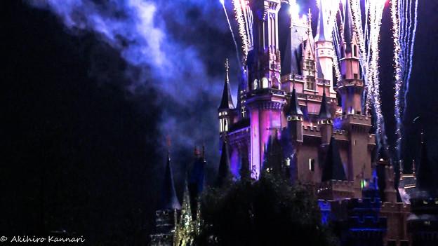 写真: Tokyo Disneyland