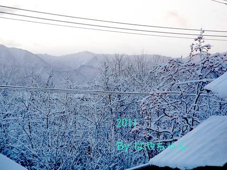 2011年クリスマス 早朝