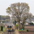写真: キハE132形キハE132-12 普通常陸太田行き