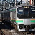 E217系コツF-51編成 普通東京行き