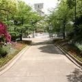 Photos: 兵庫県公館(玄関~正門)