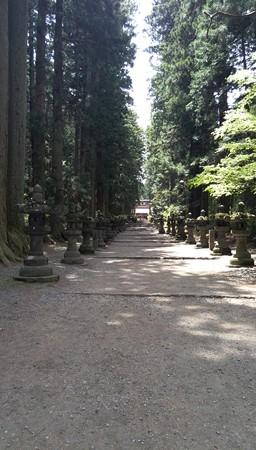 冨士北口浅間神社の参道