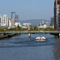 写真: 水の都大阪
