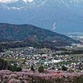 Photos: 上伊那の春