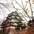 I love Nagoya