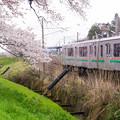 大河原ひと目千本桜-06353