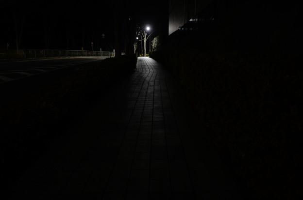 夜の坂道2