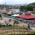 写真: 春の東山動植物園 No - 076:バラ園の展望台から見た景色(2015/4/4)