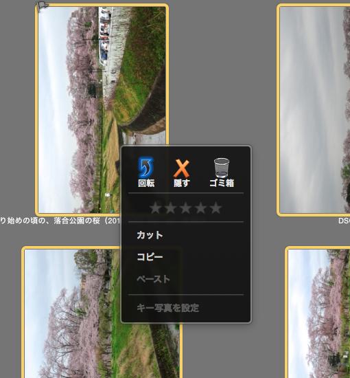 iPhotoでも、複数枚選択して、回転可能だった…