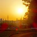 写真: 夕日に照らされる給水塔 - 2