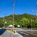 写真: 岐阜公園(金華山)
