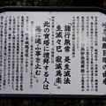 写真: 岐阜公園 No - 17:岐阜城題目塚(説明)