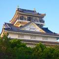 写真: 岐阜城 No - 12:夕暮れ時の岐阜城