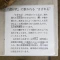 写真: 岐阜城資料館 - 12:さざれ石(説明)