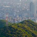 写真: 岐阜公園:展望レストランの展望台から見た、夕暮れ時の景色 - 10