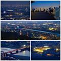岐阜公園:展望レストランの展望台から見た夜景 - 33