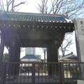 玉蔵院の門