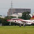 Photos: T-4 レッドドルフィン
