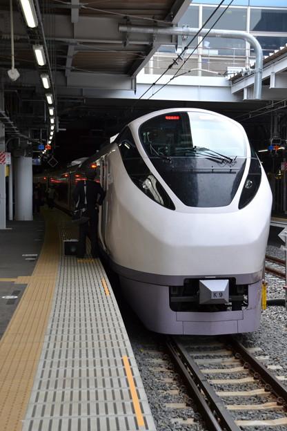 E657系 水カツK9編成 [東海道線 品川駅]