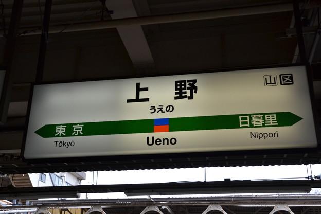 8番線駅名標 [上野東京ライン・常磐線 上野駅]