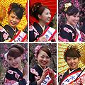 Photos: 梅大使2012 Close-Up