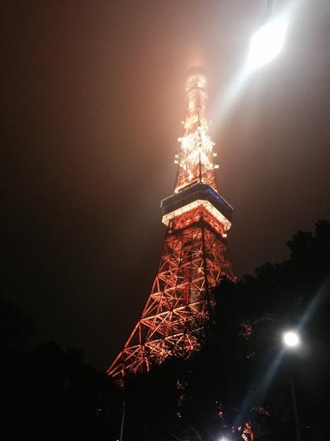tokyo tower brightness