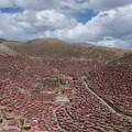 Photos: 奇跡の赤い景色
