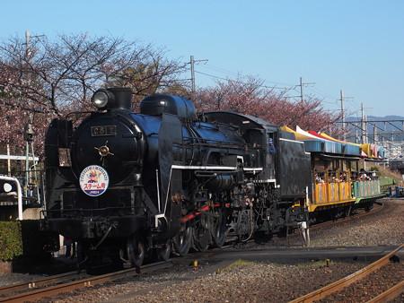 C61 SLスチーム号 梅小路蒸気機関車館02