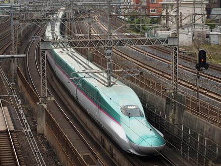 E5系はやぶさ 東北新幹線大宮~上野