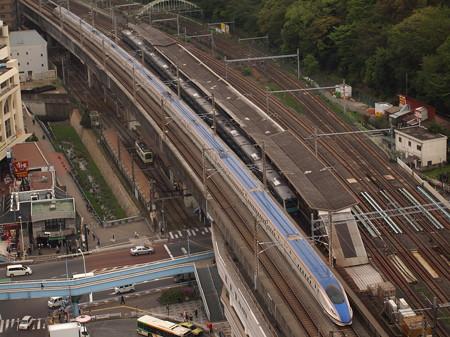 E7系あさま 東北新幹線上野~大宮