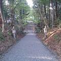 Photos: 相鹿牟山神社1 参道