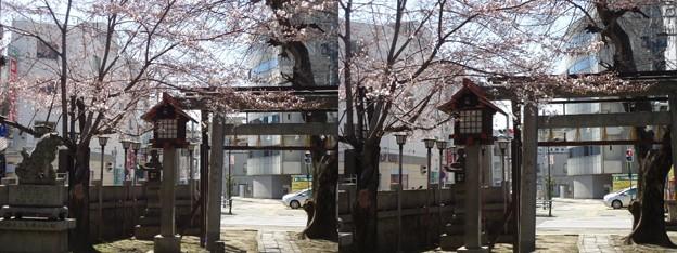 写真: 神社3
