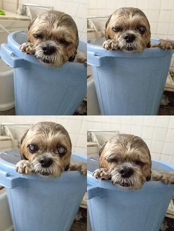 お風呂大好き2