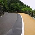 Photos: IMG_0600 道路わきの見晴台