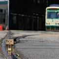 Photos: ダンボーと都電とコーン