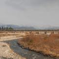 北アルプスをバックに早月川を渡る