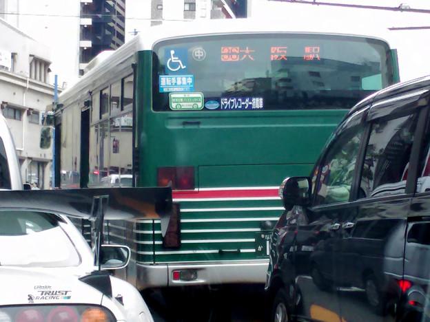 ゼブラ バス