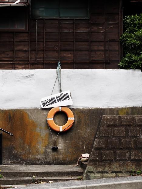 89 waseda sailing