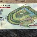 20150424 今城塚古墳
