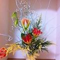 Photos: 玄関の花。クリスマスです。...