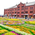 Photos: 春色の赤レンガ倉庫
