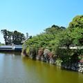 Photos: 初夏の陽気