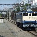 Photos: EF65 1106