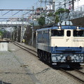 Photos: EF65 1106