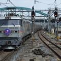 EF510-510+E26系【寝台特急カシオペア】